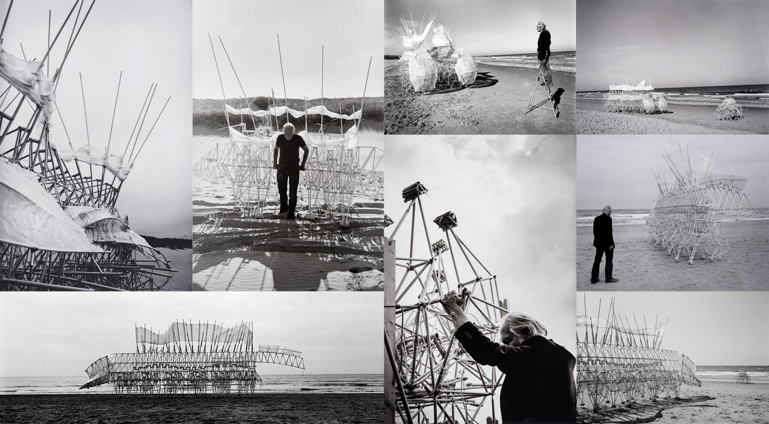 strandbeest-bw-collage